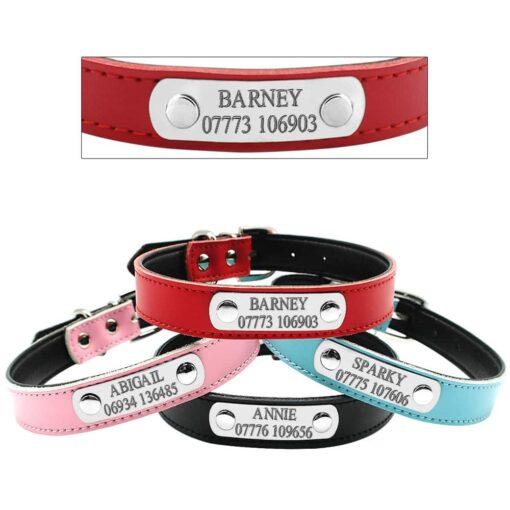 Halsband hond met naam en telefoonnummer met riem 4 kleuren