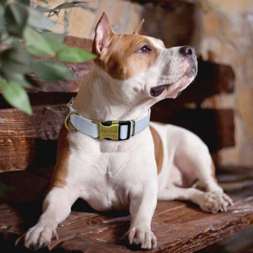 30250 z5hwbd 510x510 - Halsband hond met naam en telefoonnummer vintage uitstraling