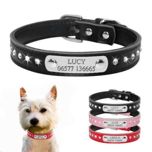 Halsband hond of kat met naam en telefoonnummer leer steentjes