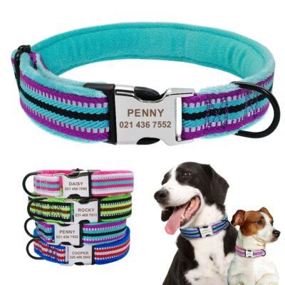 Halsband hond met naam en telefoonnummer en/of volledig adres nylon reflecterend gewatteerd