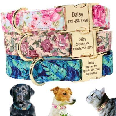 Halsband hond of kat met naam en telefoonnummer en/of volledig adres nylon