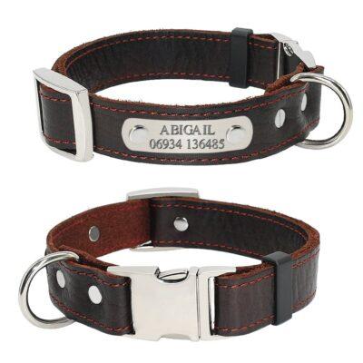 3169 coi8xb 400x400 - Halsband hond hondentuig halsband kat met naam en telefoonnummer
