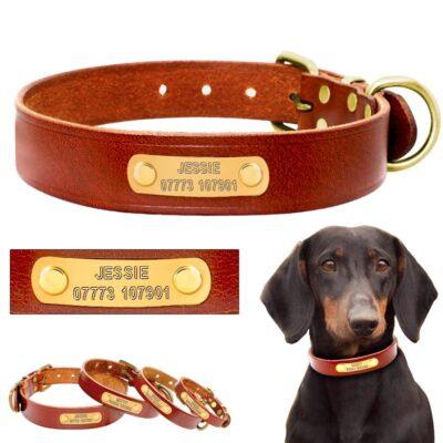 3178 vjjque 400x400 - Halsband hond met naam en telefoonnummer van leer