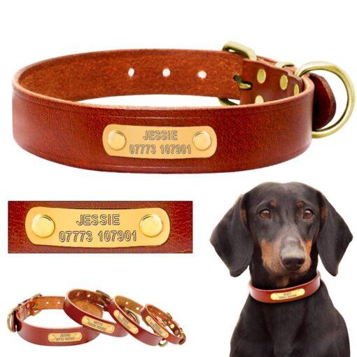hondenhalsband met naam en telefoonnummer bruin leer goudkleurige plaat
