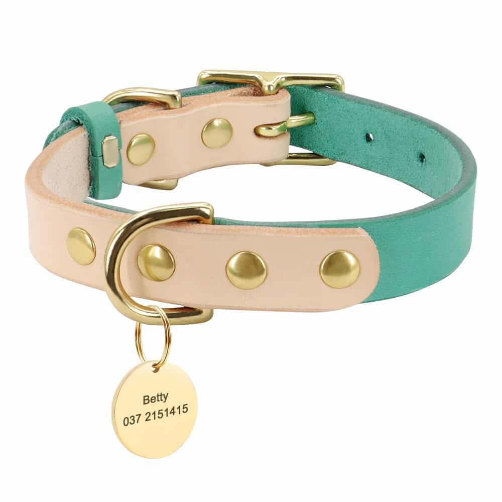33382 99djsf - Halsband hond of kat met naam en telefoonnummer leer