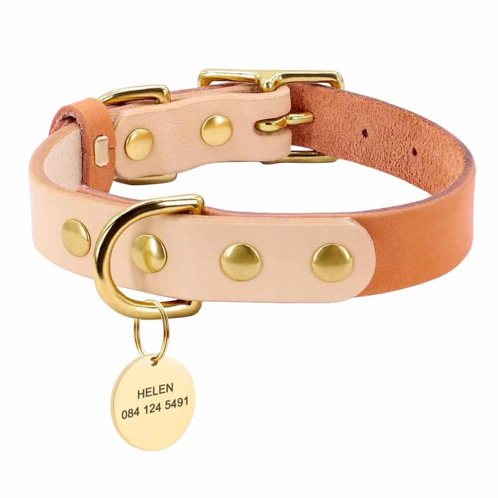 33388 sizpa5 - Halsband hond of kat met naam en telefoonnummer leer