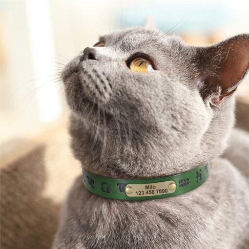 Halsband hond of kat met bedrukkingen in het leer in vier kleuren