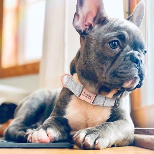 Halsband hond met naam en telefoonnummer nylon effen kleur