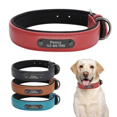 35370 czghrf 400x400 - Honden katten halsband met naam en telefoonnummer tuig harnas