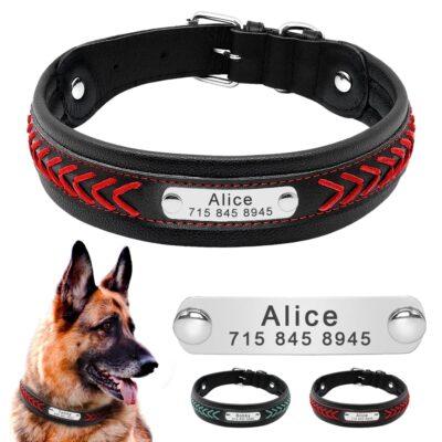 5393 61iwtz 400x400 - Halsband hond hondentuig halsband kat met naam en telefoonnummer
