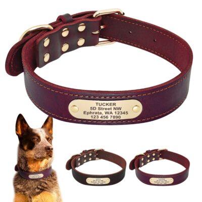 5408 mw2t4m 400x400 - Halsband hond met naam en telefoonnummer van leer