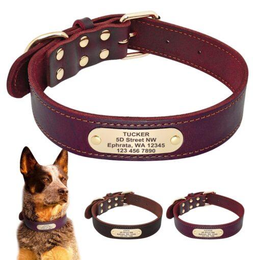 Halsband hond met naam en telefoonnummer en/of volledig adres leer