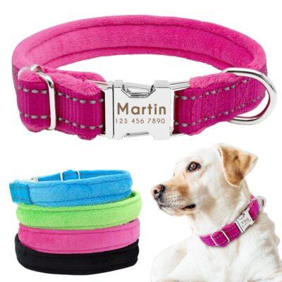 5698 gic7ia 400x400 - Halsband hond met naam en telefoonnummer nylon gewatteerd
