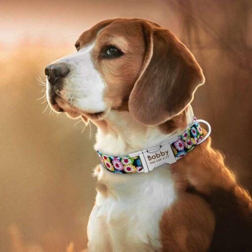 Halsband hond met naam en telefoonnummer nylon 6 patronen