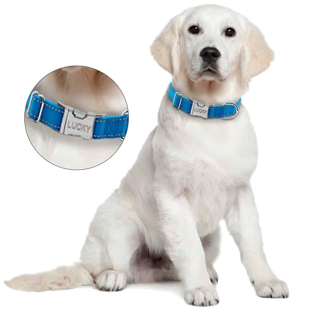 5de254d0e445df152cf4098a4159c4d8 - Halsband hond met naam en telefoonnummer nylon reflecterend