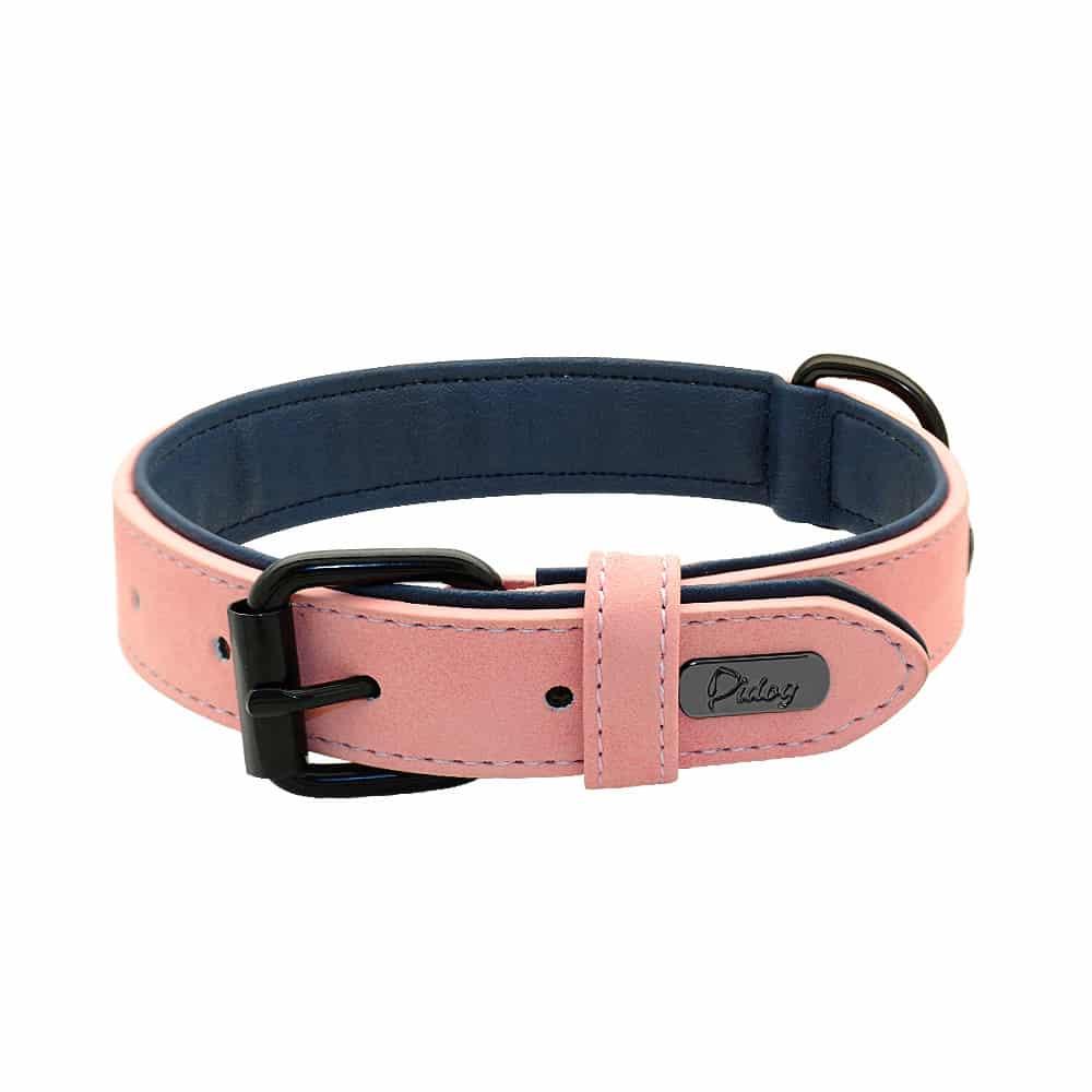 601fd8fcfb3431d3a281116496b04543 - Halsband hond met naam en telefoonnummer gevoerd leer