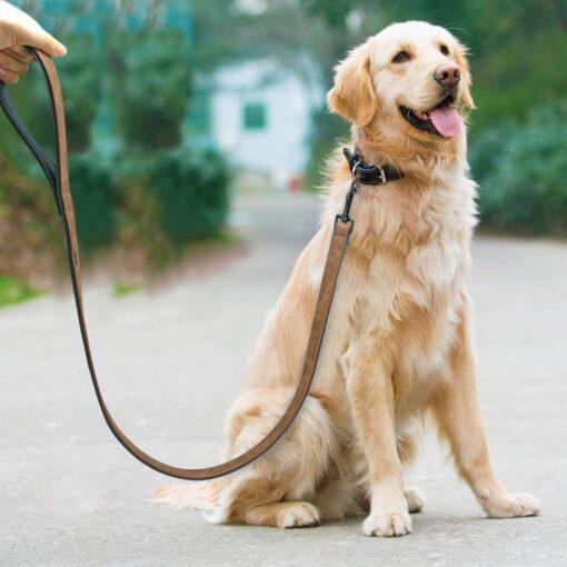 6176 uuswde 510x510 - Hondenriem robuust met gevoerd leer