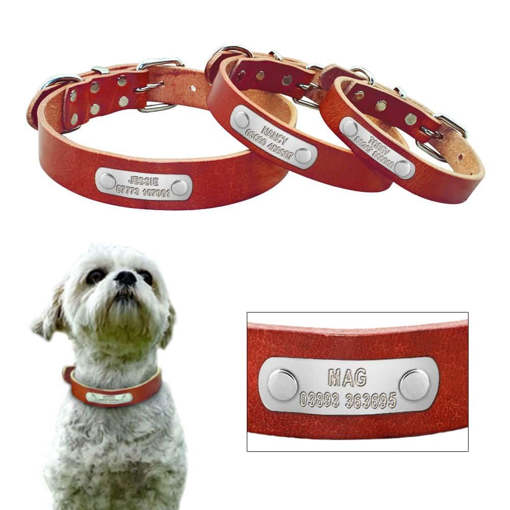7ba02cfa1de2ed9ac25e107f867771b6 - Halsband hond met naam en telefoonnummer zilveren naamplaat