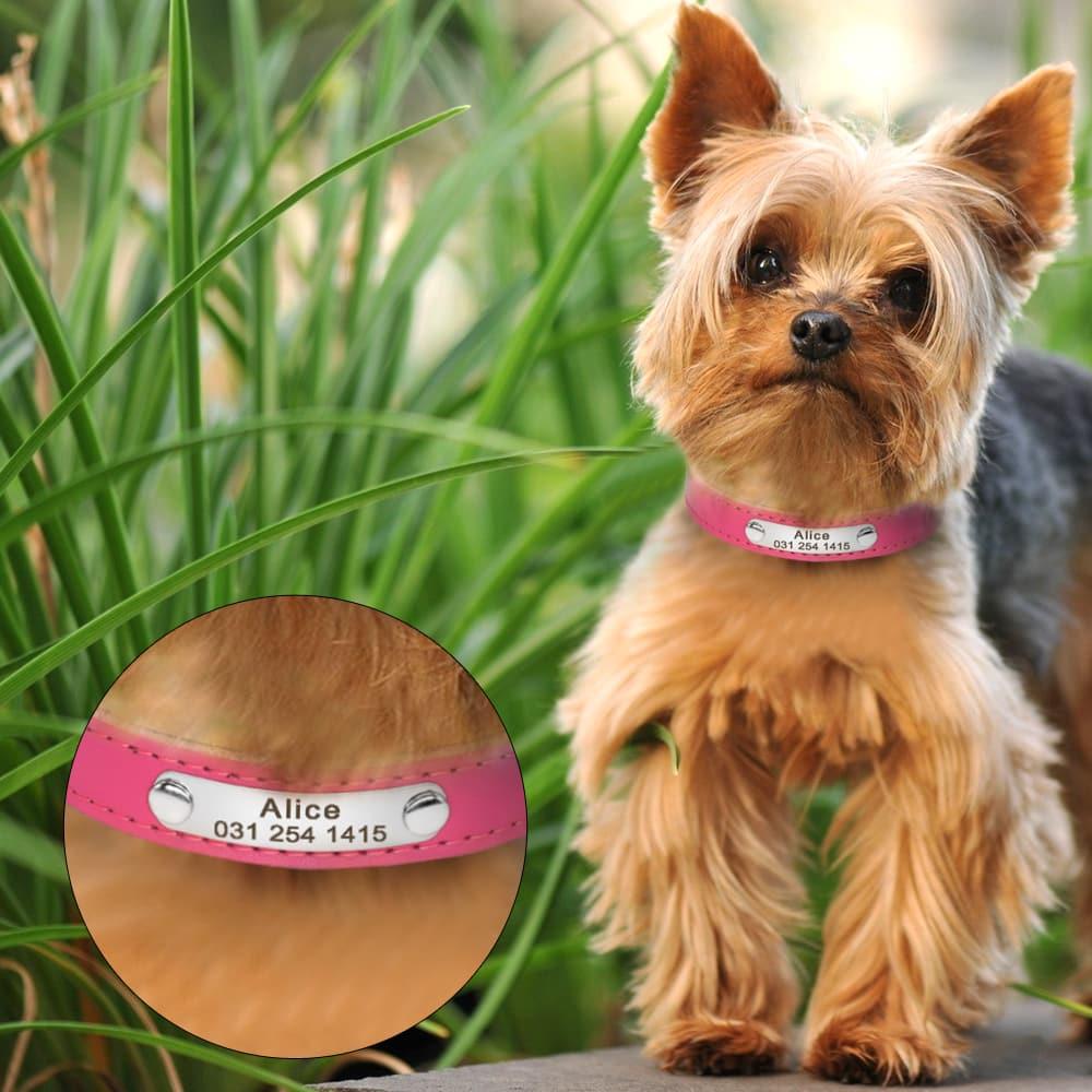 hondenhalsband met naam en telefoonnummer in 7 kleuren leer