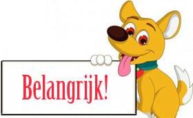 Belangrijk - Halsband hond met naam en telefoonnummer leer gewatteerd robuust