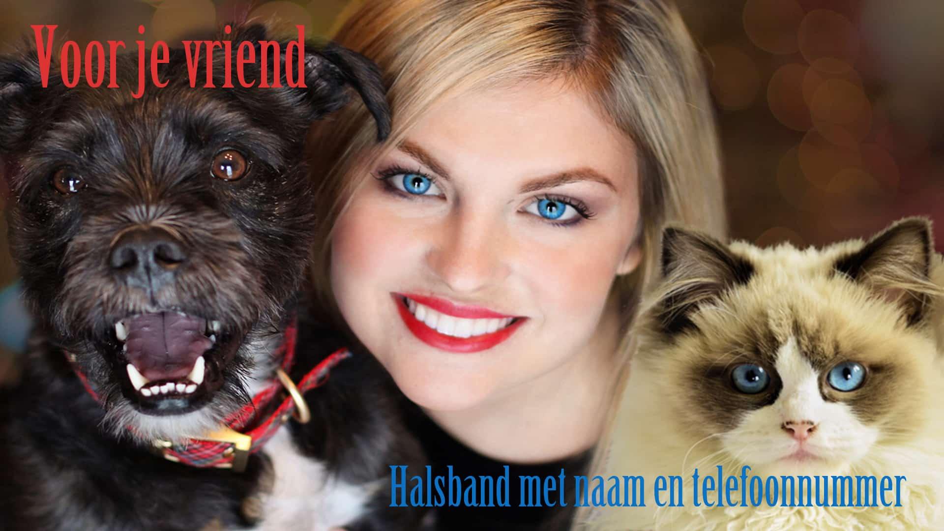 PBanner1920×1080c - Halsband hond hondentuig halsband kat met naam en telefoonnummer