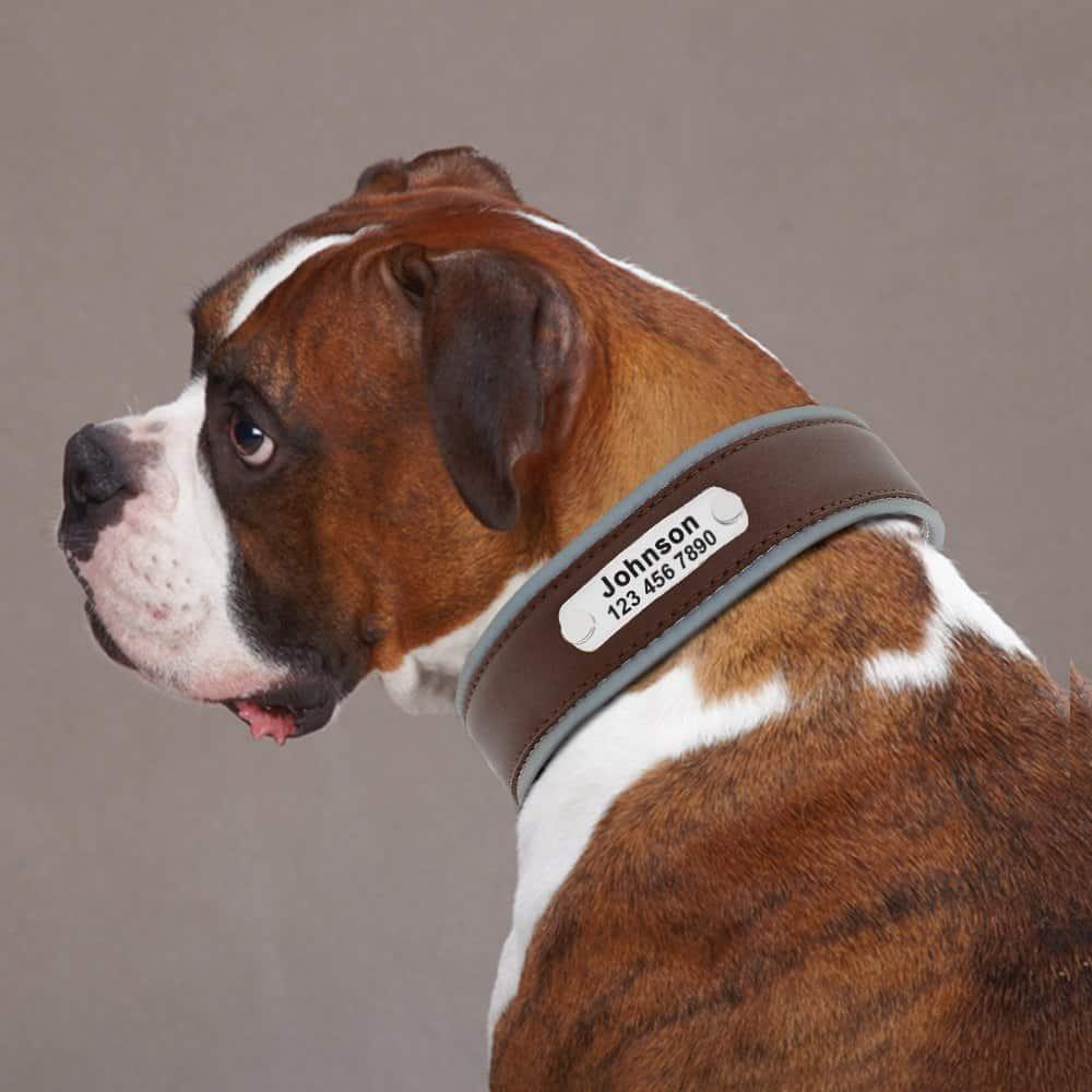 b68d1e927dc7ab45a88e287a70d4757b - Halsband hond met naam en telefoonnummer leer reflecterend