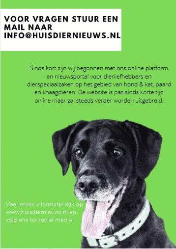 huisdiernieuws1 - Alles over honden, katten en andere dieren